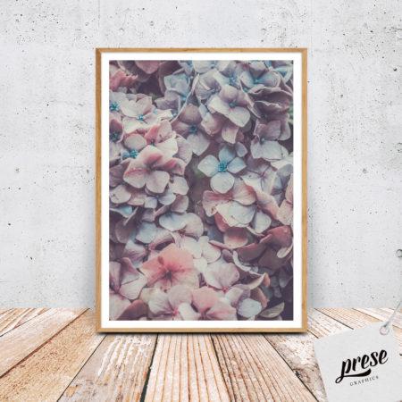 紫陽花のポスター